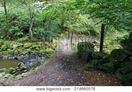 small stone footbridge in jumble hole clough in west yorkshire in valley woodland with stream