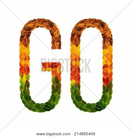 go word is written with leaves white isolated background, banner for printing
