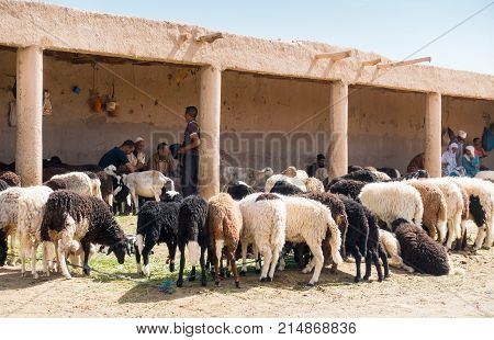 Rissani Morocco - May 09 2017: Closeup of moroccan men sitting together talking in the shade while waiting for customers to sell their sheep to.