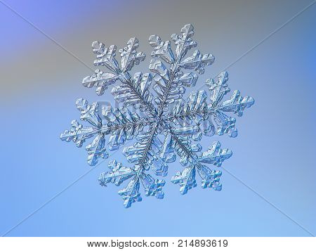 Snowflake glittering on blue background. Macro photo of real snow crystal: large stellar dendrite with fine hexagonal symmetry, complex ornate shape and six long, elegant arms with many side branches.