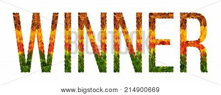 winner word is written with leaves white isolated background