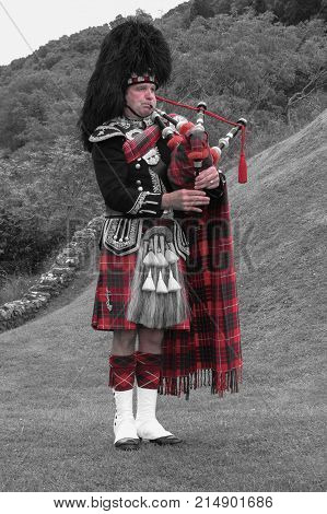 Scottish Bagpiper Of The Highlands