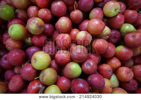A cluster of red and green cherries. A pile of fruit. A cherry bundle
