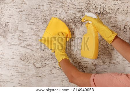Cleaning Accessories For Clean Premises.