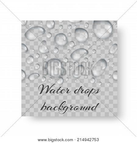 Invitation card design for an environmental event with transparent drops of dew.