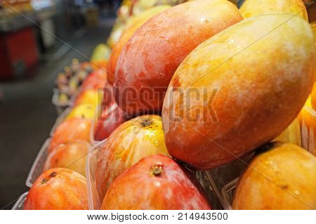 Boqueria Market. Ripe juicy mangoes are laid out in rows on the shelves of a supermarket. Fruit in containers.