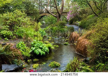 A wooden bridge and stream in Portland's Crystal Springs Rhododendron Garden, Oregon