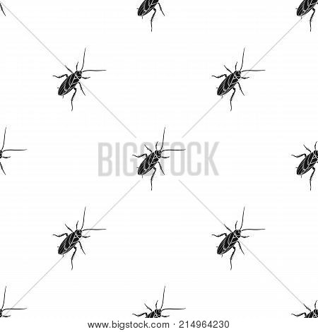 A mustachioed cockroach. Arthropod insect, cockroach single icon in black style vector symbol stock isometric illustration .