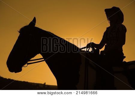 Silhouette of a cowboy on horse in front of sunset.