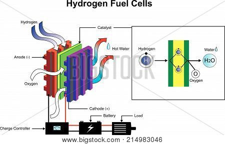 Hydrogen is a chemical element with chemical symbol H and atomic number 1. Illustration.