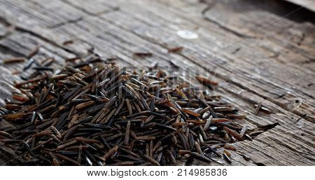 Heap of raw wild rice on an old wooden table, copy space