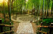 A taoist Ying and yang symbol walking path within a bamboo forest in the Wuxi china three kingdoms attraction in Jiangsu province. poster