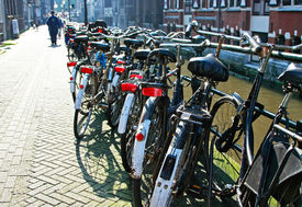A row of bicycles in Amsterdam, The Netherlands.