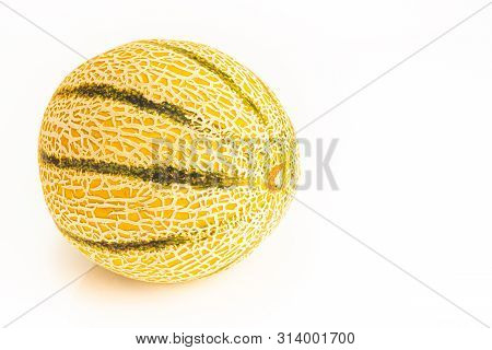 Muskmelon Cucumis Melo Is A Species Of Melon That Has Been Developed Into Many Cultivated Varieties.