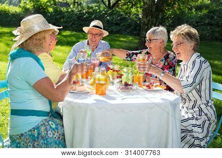Senior Family Members Picnicking.