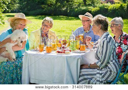Senior Family Members Are Picnicking In Park, Having Meal, Eating Cake, Drinking Fruit Juice, Enjoyi