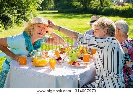 Elderly Friends Having Picnic In Sunny Lush Nature.