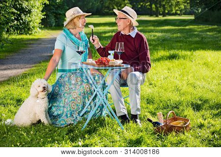 Happy Senior Couple With A White Dog Picnicking In The Park.
