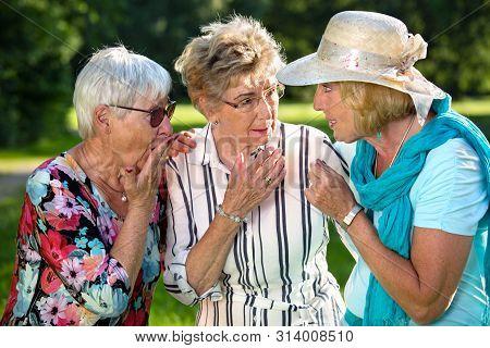 Three Elderly Women Sharing Secrets.