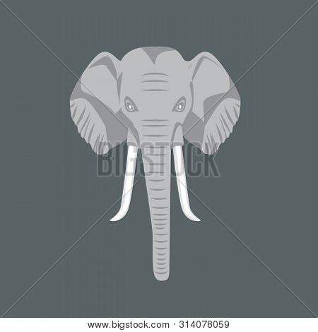African Elephant Head With Front View. Vector Illustration.