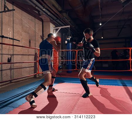 Two Strong Boxers Practicing Kickboxing In The Ring At The Health Club