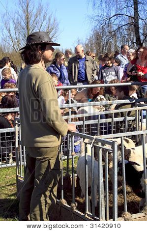 Shepherd Standing Next To Sheep Pen
