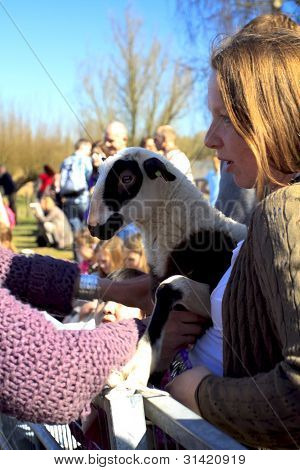 Young Girl Holding A New Born Lamb
