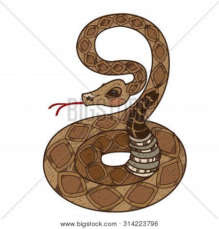 Rattlesnake. Illustrations For Gaming Applications Design For Teaching Aids.