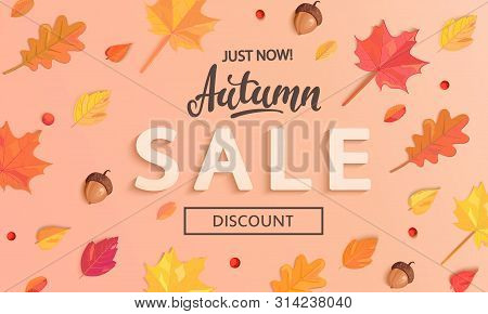 Autumn Sale Banner With Fall Leaves, End Or Mid Season 50 Percent Discount Poster.invitation For Sho