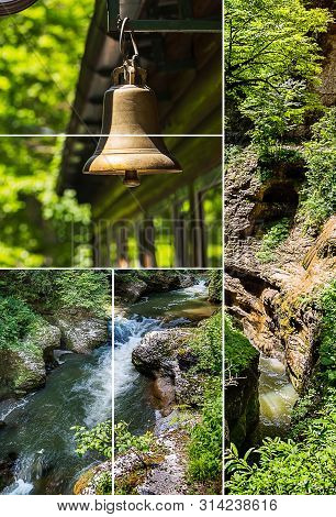 Photo Set Of Various Nature Landscapes In Summer