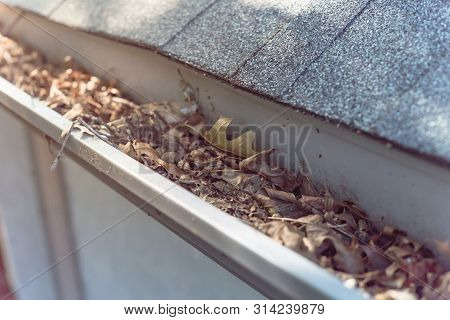 Close-up gutter clogged by dried leaves and messy dirt need clean-up poster