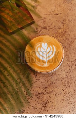 Close Up Cycad Palm Tree Isolated On Light Background With Cup Of Coffee. Copy Space