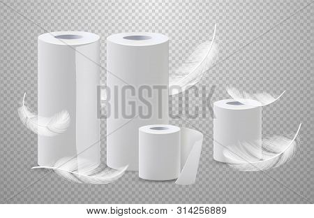 Realistic Vector Toilete Paper And Paper Towels With Feathers. Realistic Paper Roll For Bathroom And