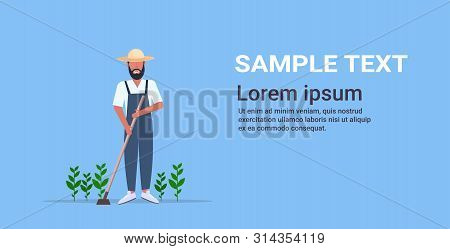 Male Gardener Using Hoe Countryman Hoeing Ground With Seeding Plants On Vegetable Field Planting Har