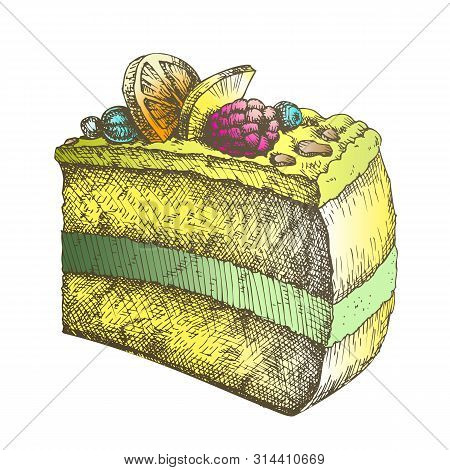 Color Tasty Creamy Cake Sweet Dessert Vintage Vector. Delicious Cake With Blackberry And Blueberry,