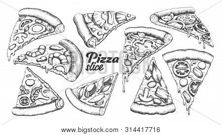 Assortment Different Slice Pizza Set Ink Vector. Collection Slice Cheese Pizza With Ingredients Mush