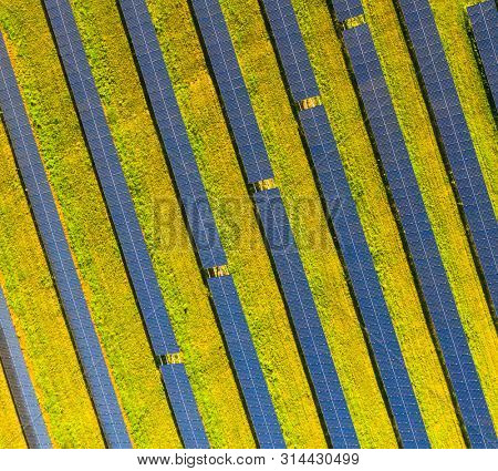 Solar thermal collector from above. Solar panels produce green, enviromentaly friendly energy from the sun.  poster