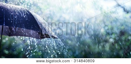 Rain On Umbrella - Weather Concept, Background