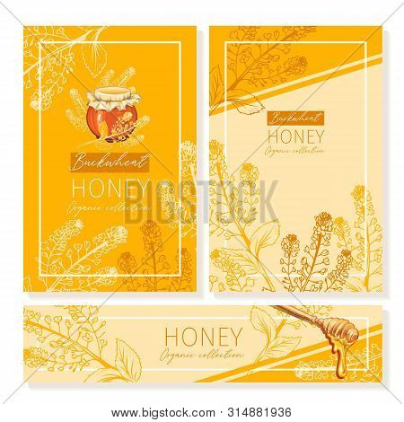 Buckwheat Honey Print Template. Yellow And Orange Banners For Thanksgiving Holiday Or Packaging Bran