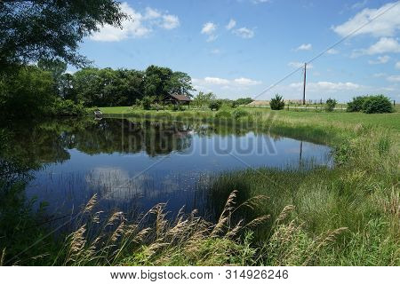 Small Pond In A Rural Area.  The Pond Is Surrounded By Trees And Grass.  There Is Also A Rustic Gaze