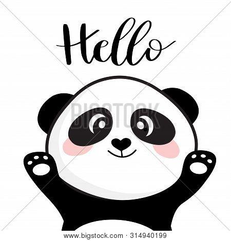 Baby Panda Face Logo Template. Baby Panda Face Icon. Asian Bear. Panda Head Isolated On White Backgr