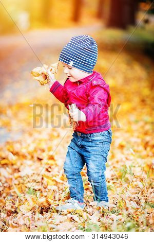 Two Years Old Toddler Have Fun Outdoor In Autumn Park
