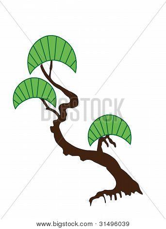Illustration of japanese bonsai