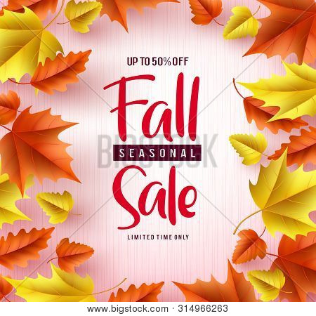 Fall Season Sale Vector Banner Background. Fall Seasonal Sale Text With Colorful Maple And Oak Leave
