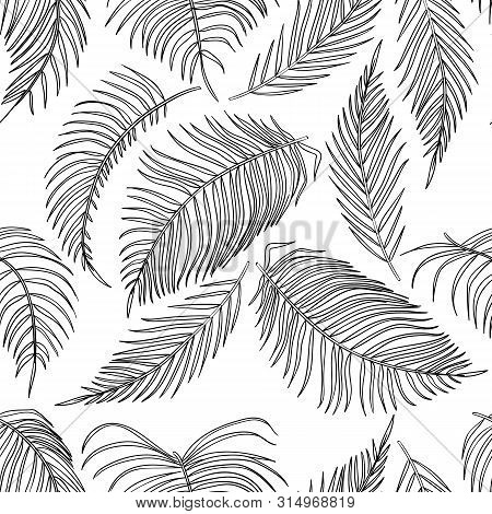 Vector Sketch Palm Leaves Seamless Pattern, Jungle Leaf On White Background.