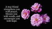 Friendship inspirational quote - A true friend strengthens you with prayer, blesses you with words, and encourages you with hope. With beautiful pink roses and dark black background. poster