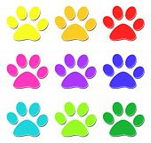 Glossy colored paw print on white background poster