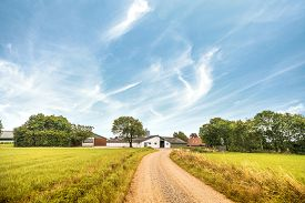 Road Going Up To A Farm In A Rural Landscape In The Summer Under A Blue Sky