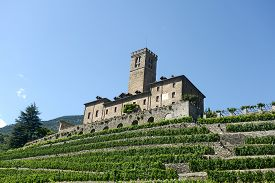 Panoramic View Of The Castle Of Sarre And Its Vineyard In Aosta Valley - Italy