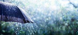 Rain On Umbrella - Weather Concept, Background